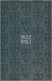 ICB Gift and Award Bible: Boys Edition