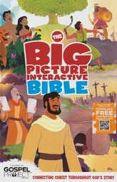 Big Picture Interactive Bible, The