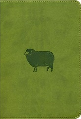 ESV Kid's Compact Bible, trutone, green pastures