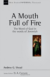 Mouth Full of Fire: The Word of God in the Words of Jeremiah (New Studies in Biblical Theology) [Paperback]